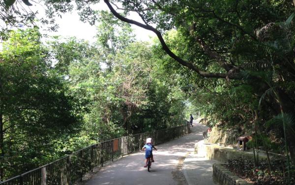 Bowen-Road-Fitness-Trail