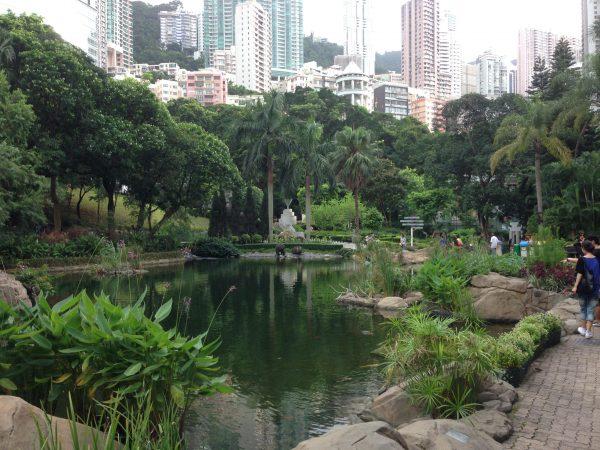 Hong Kong Park Pond