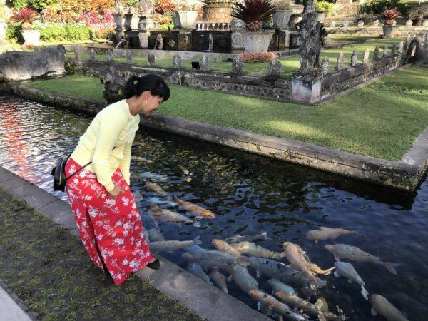 Bali Tirta Gangga Royal Garden- AJ