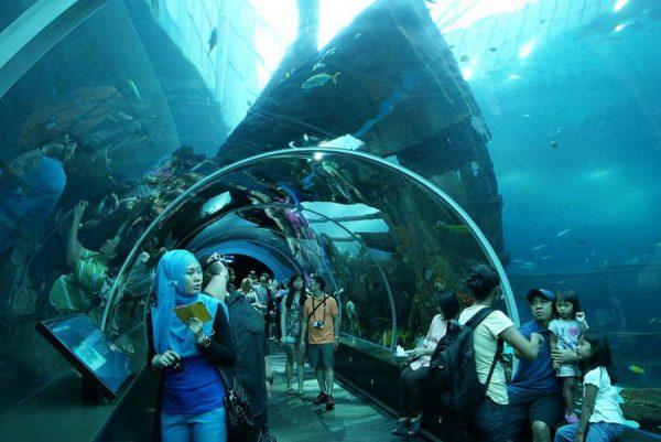 Must-See - Underwater World Sentosa